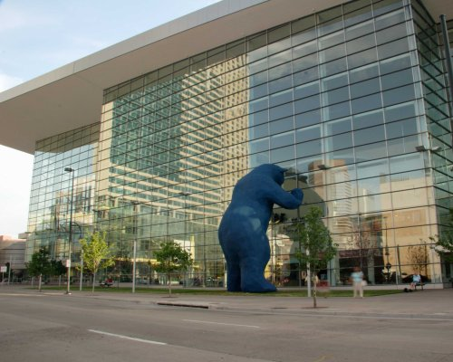 Bear and building