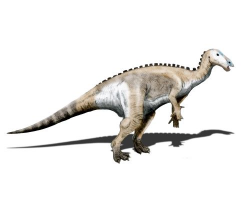 Artist impression of a mantellisaurus